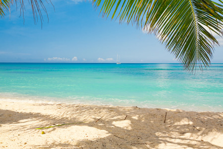 turquoise water: Tropical beach Stock Photo