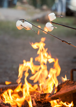Marshmallows roasting over campfire