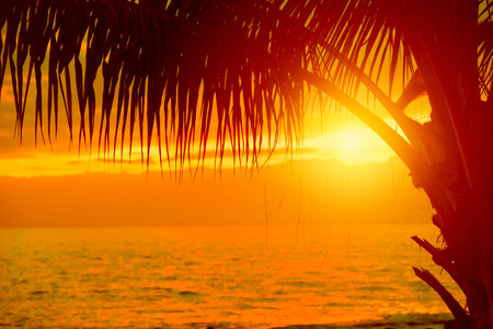 romance sky: Tropical sunset Stock Photo
