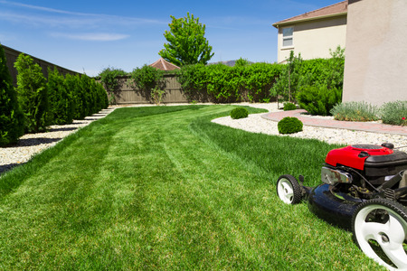 Rasenmäher auf grünem Rasen Standard-Bild - 63556896
