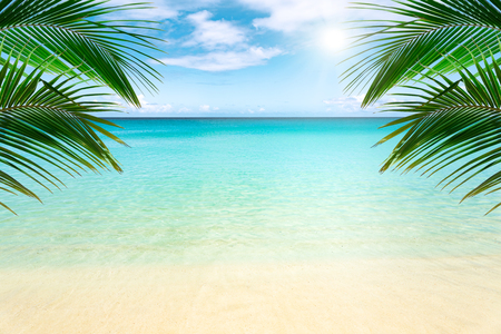 Sunny tropical beach with palm trees Imagens