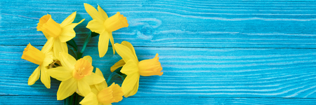 Daffodils bouquet on blue wooden table Banque d'images