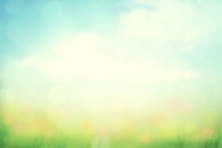 Spring meadow blur background