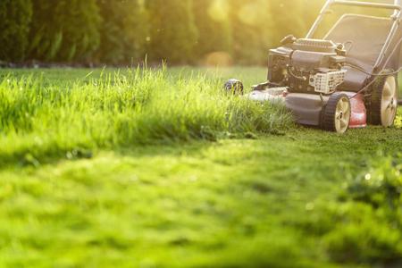 Lawn mower cutting green grass Standard-Bild - 118200653