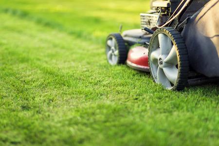 Lawn mower cutting green grass Stockfoto