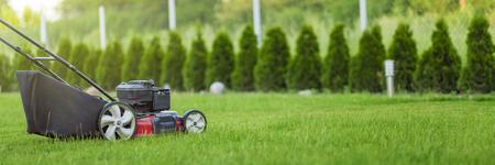 Lawn mower cutting green grass 免版税图像