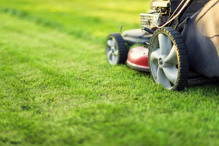 Lawn mower cutting green grass Stock fotó