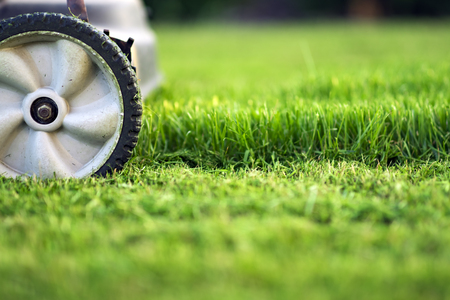Lawn mower cutting green grass Stockfoto