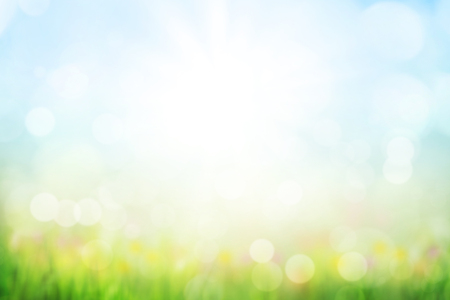 Abstract  with green grass and flowers over sunny blue sky