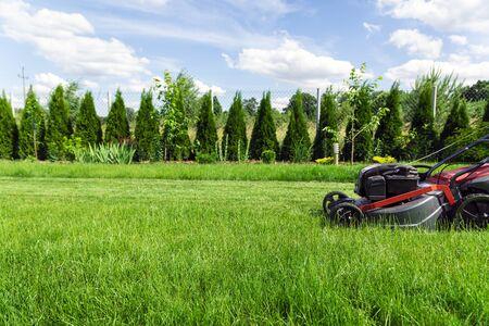 Lawn mower cutting tall green grass in backyard