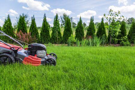 Lawn mower cutting green grass in backyard Reklamní fotografie