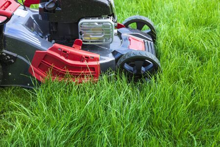 Lawn mower cutting green grass in backyard Reklamní fotografie