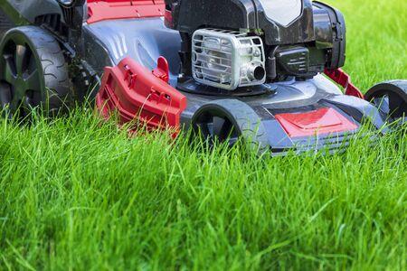 Lawn mower cutting green grass in backyard Reklamní fotografie - 142537649