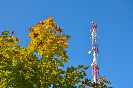 Mobile phone communication radio tv tower, mast with cell microwave antennas and broadcasting network frequency transmitter against the blue sky and trees 1 Stok Fotoğraf
