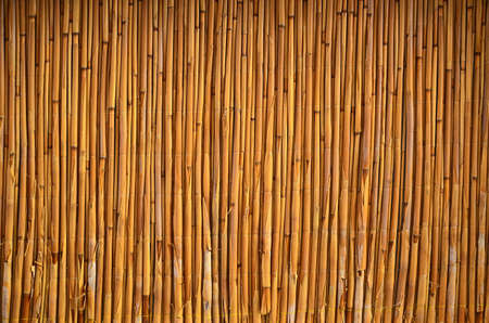 Bamboo surface, wall or floor, texture background. Wall of an Asian, Chinese house built from bamboo sticks Stok Fotoğraf
