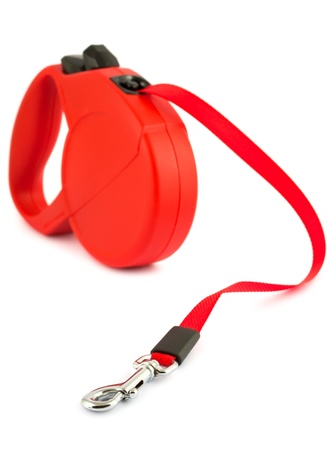 lead: Red retractable leash for dog isolated on white background