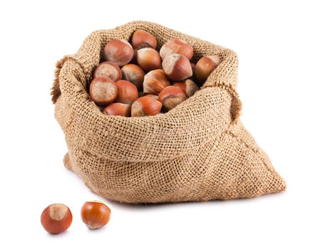 Hazelnuts in canvas sack isolated on white background photo