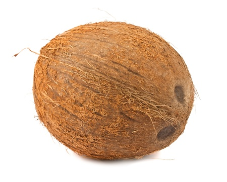 Single brown coconut isolated on white background