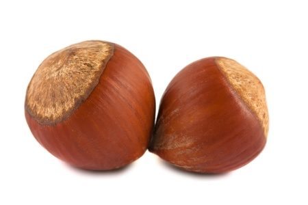 unbroken: Two ripe brown hazelnuts isolated on white background