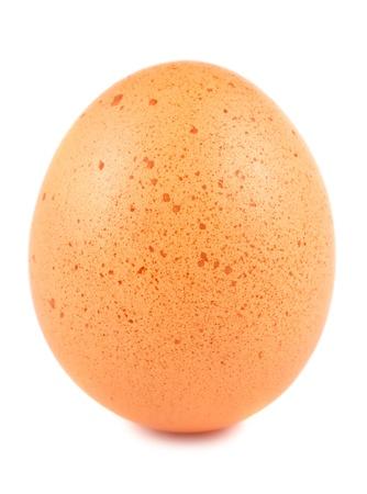 yolk: Single brown egg isolated on white background