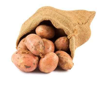 Fresh raw potatoes in burlap sack isolated on white background photo