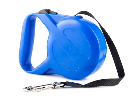retractable: Blue retractable leash for dog isolated on white background