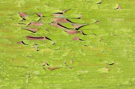Green painted grunge wooden texture for background Stock Photo - 16980596