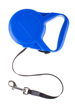 retractable: Blue retractable leash for dog top view isolated on white background