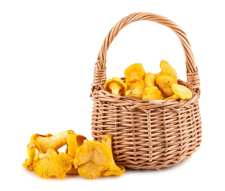 Chanterelle mushrooms in wicker basket isolated on white background photo