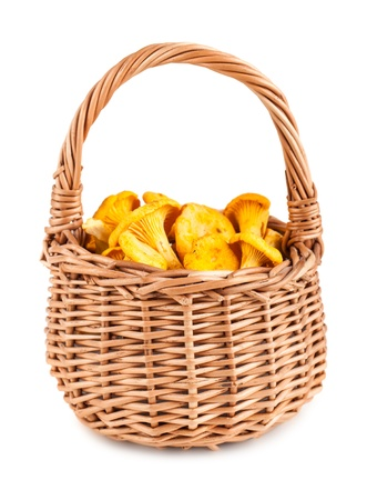 chanterelle: Wicker basket with chanterelle mushrooms on a white background Stock Photo
