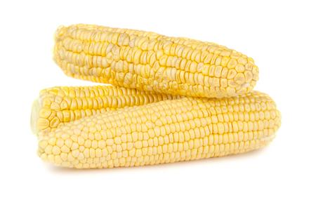 yellow corn: Three ripe yellow corn on the cob on a white background