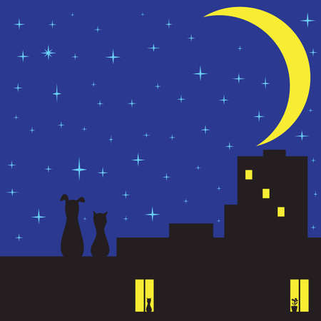 Silhouettes of cat and dog sitting on roof of house with two glowing windows and looking on sky with plenty of stars and crescent moon Vector