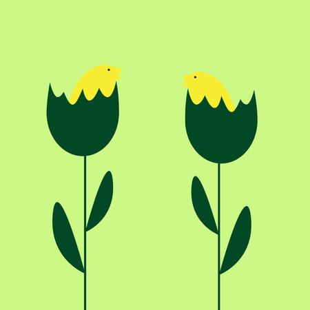eggshells: Fondo de Pascua con dos pollos amarillos lindos que se sientan en las c�scaras de huevo que est�n creciendo como plantas
