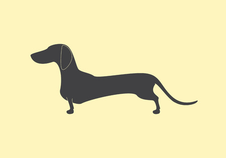 Grey colored silhouette of standing dachshund with flaxen contour isolated on linen background. icon template, design element