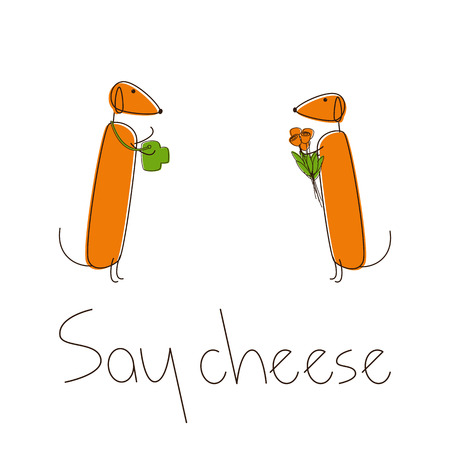 say cheese: Two cute brown contoured foxy colored dachshunds. One with camera, another with bouquet of flowers with lettering Say cheese under them isolated on white background. Traveling concept, design element