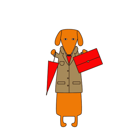 dissolved: Cute orange colored brown contoured dachshund in beige jacket, white shirt and red tie standing on hind legs with dissolved forelegs, holding red umbrella in one hand and red bag in another on white background