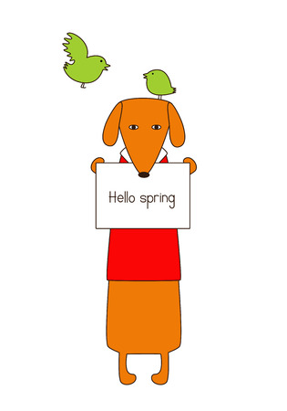 dissolved: Cute orange colored brown contoured dachshund in red sweater with white collar standing on hind legs with dissolved forelegs, holding plate with lettering hello spring in paws, one bird sitting in dog`s head and one bird flying. Flat style illustration