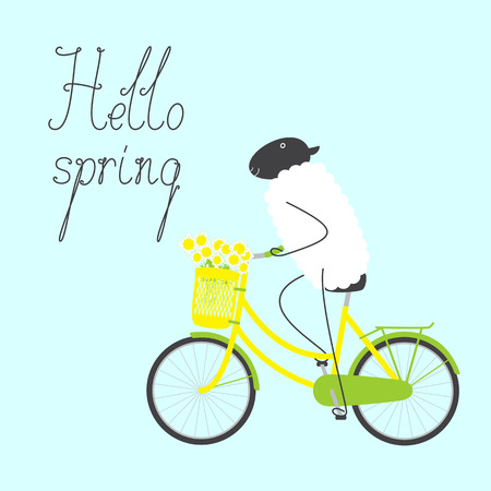 Greeting card with cute sheep riding bicycle with yellow colored female frame, bouquet of chamomiles in pannier on handlebar, dark grey saddle, wheels with green mudguards, rear rack and calligraphic lettering hello spring