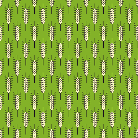 green wheat: Seamless pattern with repeating ears of wheat isolated on green background Illustration