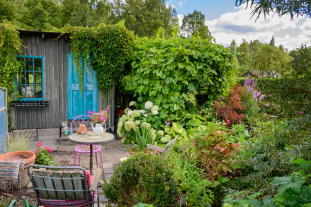 A little table with chairs in a small and very green garden. A wooden shed with turquoise door and window in the background. Stock Photo