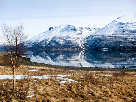 polar climate: View of winter mountains mirrored in a perfectly calm fjord in the Lyngen Alps, Norway
