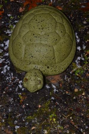 ceremic: Turtle in the Rain Stock Photo