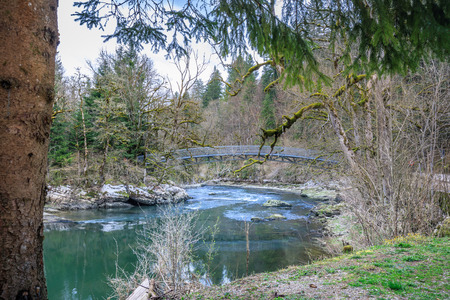 bridge and mossy trees near saut du doubs waterfall switzerland