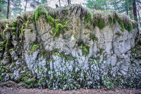 abstract rock structure near saut du doubs waterfall switzerland