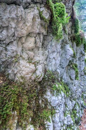 abstract rock structure near saut du doubs waterfall switzerland