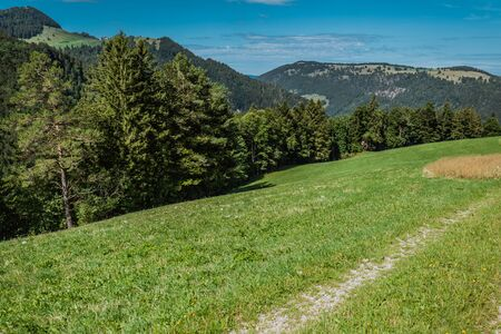 hiking on weissenstein mountain in switzerland, panorama of swiss alps, solothurn Stock Photo - 128611709