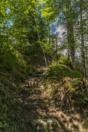 Hiking through swiss alps on a sunny day with blue sky near toggenburg, gamsalp Stock Photo - 128611596