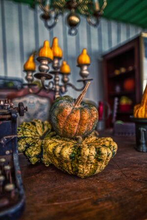 colorful traditional halloween decoration with different pumpinks for party, autumn