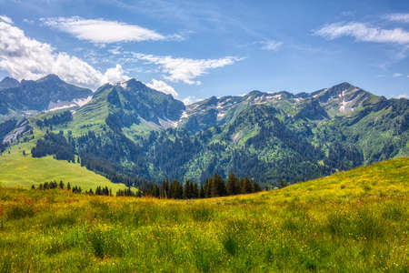 hiking near les mosses in the swiss alps, summer