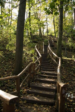 old stairs in the forest in germany in september, berlin humboldthain